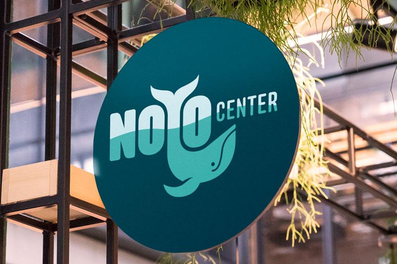 Noyo Center